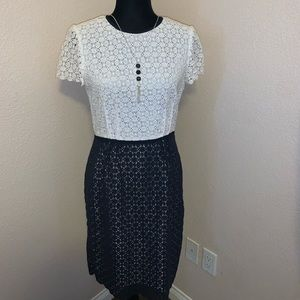 Calvin Klein Dress - Size 4